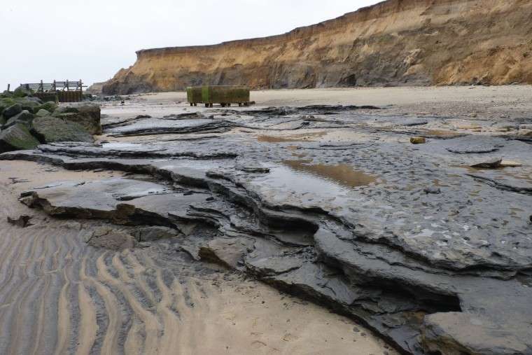 Coastal exposure of Pleistocene laminated sediments at Happisburgh (credit: Ashton et a. 2014 PLOS1)