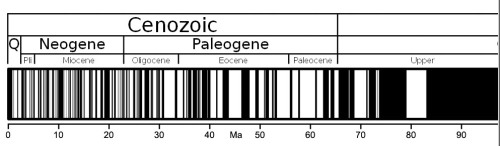 The Cenozoic history of magnetic reversals - black periods were when geomagnetic field polarity was normal and white when reversed. (credit: Wikipedia)